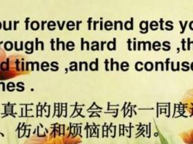 友谊唯美短句八个字