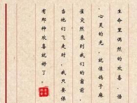 林清玄语录